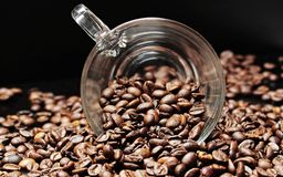 Coffee Beans, Coffee Cup, Cup Stock Image