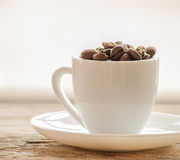 Coffee beans in coffee cup  on white. Close up Stock Photos