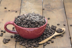 Coffee beans in a coffee cup. On a wooden floor Stock Images