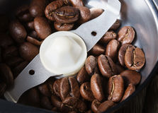 Coffee beans in a coffee grinder Royalty Free Stock Photos