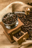 Coffee beans in a coffee grinder Royalty Free Stock Images