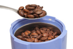 Coffee beans in coffee grinder Royalty Free Stock Photo