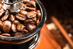 Coffee beans in a coffee- mill. Stock Image