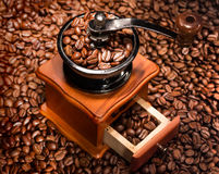 Coffee beans in a coffee-mill. Royalty Free Stock Image
