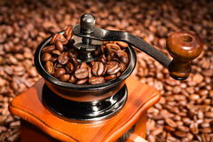 Coffee beans in a coffee-mill. Stock Image