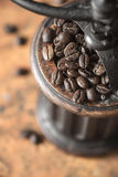 Coffee beans in the coffee mill top view Royalty Free Stock Photography