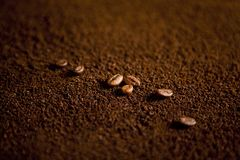 Coffee beans on coffee powder. Macro shot royalty free stock image