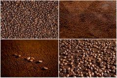 Coffee beans on coffee powder. Macro shot stock image
