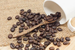 Coffee Beans On A Coffee Spoon. Coffee beans on a coffee spoon, selective focus Royalty Free Stock Photos