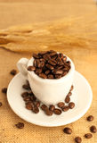 Coffee beans Coffee. On the table Royalty Free Stock Photography
