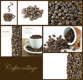 Coffee beans collage. Set of coffee beans images on brown background Royalty Free Stock Photos