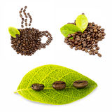Coffee Beans collage isolated on white bacground Royalty Free Stock Image