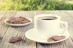 Coffee with beans and cookies on a natural background Stock Image