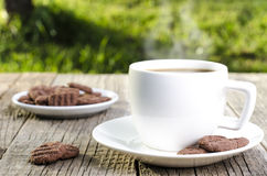 Coffee with beans and cookies on a natural background Royalty Free Stock Image