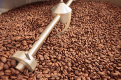 Coffee beans in a cooler Royalty Free Stock Images