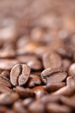 Coffee beans with copy space copyspace Royalty Free Stock Image