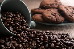 Coffee beans crumbled with a cup, in the background a plate of cookies royalty free stock photos