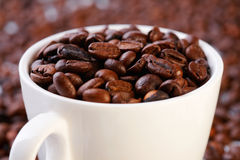 Coffee beans in a cup Stock Images