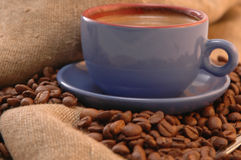 Coffee beans, and cup Royalty Free Stock Photos