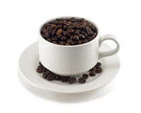 Coffee beans in a cup. On white background Royalty Free Stock Image