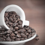 Coffee beans cup Stock Images