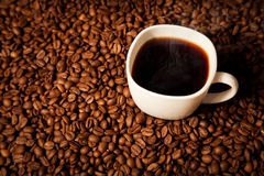 Coffee beans and cup. With hot coffee Stock Image