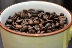 Coffee Beans in a cup! Royalty Free Stock Photography