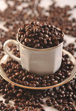 Coffee beans in the cup Royalty Free Stock Image