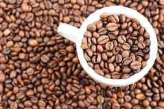 Coffee beans and cup. As a background royalty free stock photography