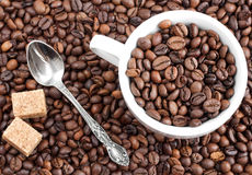 Coffee beans and cup. As a background royalty free stock photo