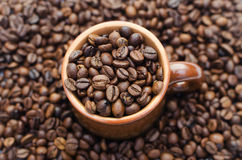 Cup of coffee. Coffee beans in a cup Stock Image