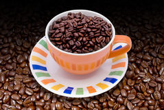 Coffee beans and cup. Fresh cup of coffee on coffee beans Stock Photos
