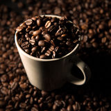 Coffee Beans in White Ceramic Mug Royalty Free Stock Images