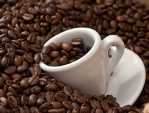 Coffee Beans and Cup (5) Stock Images