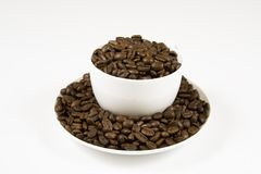 Coffee Beans in a cup. A white coffee cup on a whit background full of coffeee beans Royalty Free Stock Photography