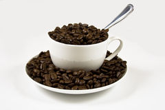 Coffee Beans in a cup. A white coffee cup on a whit background full of coffeee beans Royalty Free Stock Photos