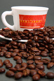 Coffee beans and cup. Roasted coffee beans scattered over cup and saucer, studio background Stock Images