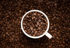 Coffee beans in the cup. Close up of coffee beans in the coffee cup Royalty Free Stock Photos
