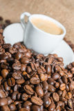 Coffee beans and cup of coffee. Selective focus Royalty Free Stock Images