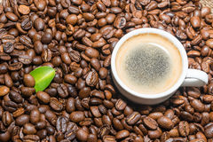 Coffee beans and cup of coffee. Selective focus Royalty Free Stock Photography