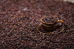 Coffee beans in a cup. A cup full of coffee beans Stock Photography