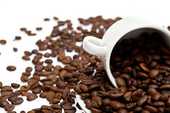 Coffee beans in a cup isolated Stock Images