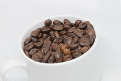 Coffee beans cup isolated. Robusta coffee beans cup isolated on white background side view Royalty Free Stock Image