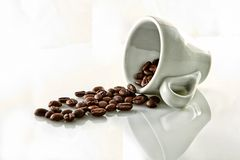 Coffee beans. In a cup of coffee isolated on white background royalty free stock image