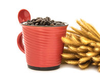 Coffee  beans  in  cup isolated on white background Royalty Free Stock Images
