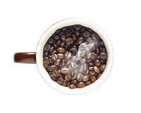 Coffee beans in cup on isolated white background Royalty Free Stock Images