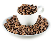 Coffee beans in cup isolated on the white background Stock Image