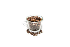 Coffee Beans in Cup isolated. On a white background stock images
