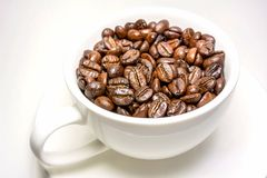 Coffee beans in cup. Medium roasted coffee beans in a white cup Stock Image