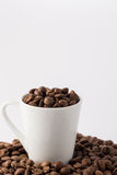 Coffee Beans in cup. Roasted brown coffee beans on white background in small espresso coffee cup royalty free stock photo